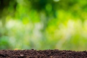 土壌菌群サプリメントソイルキュア